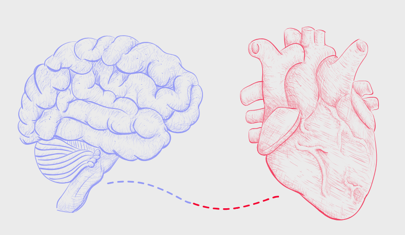 NW Chiro blog - heart and brain connection
